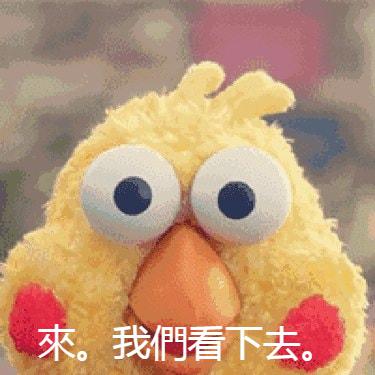 鸚鵡兄弟01.png