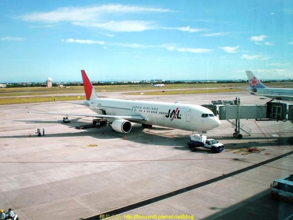 我今天要飛去日本的飛機JAL