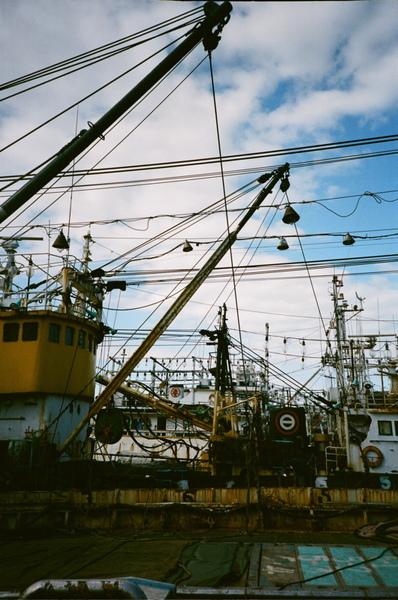 這一區的船都是等待被解體的