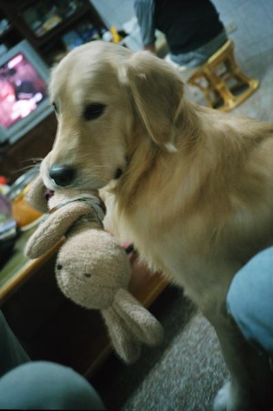 還有他愛的娃娃!!