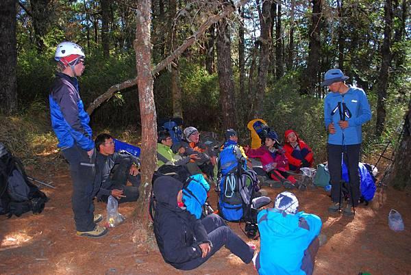 DAY5 第六堂 在回程雲陵山莊途中的針葉林