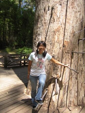 爬樹前來一張