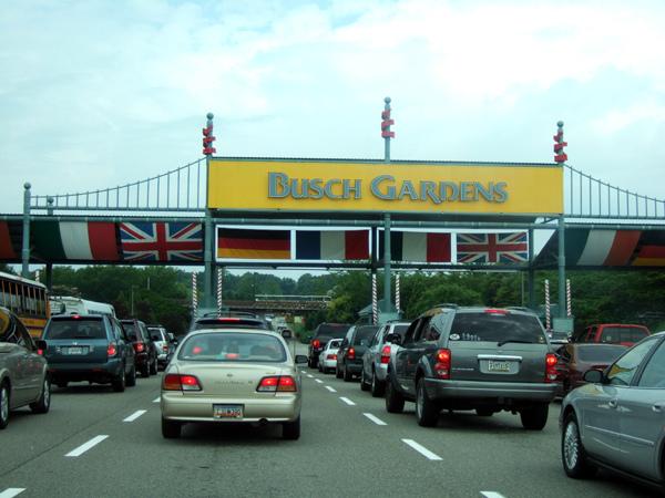 busch01.jpg