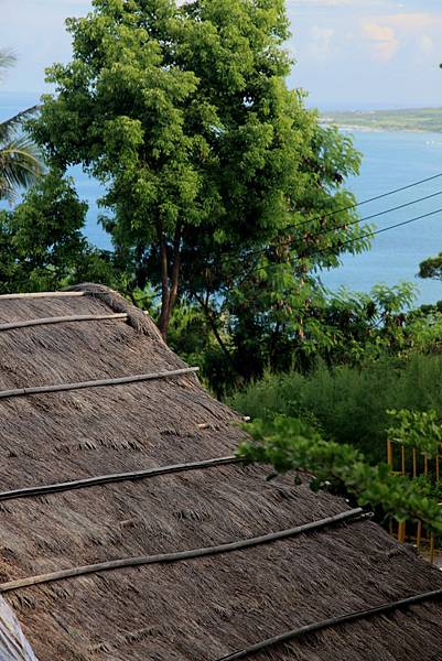 thatch roof.JPG