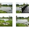 崗山公園 濕地.jpg