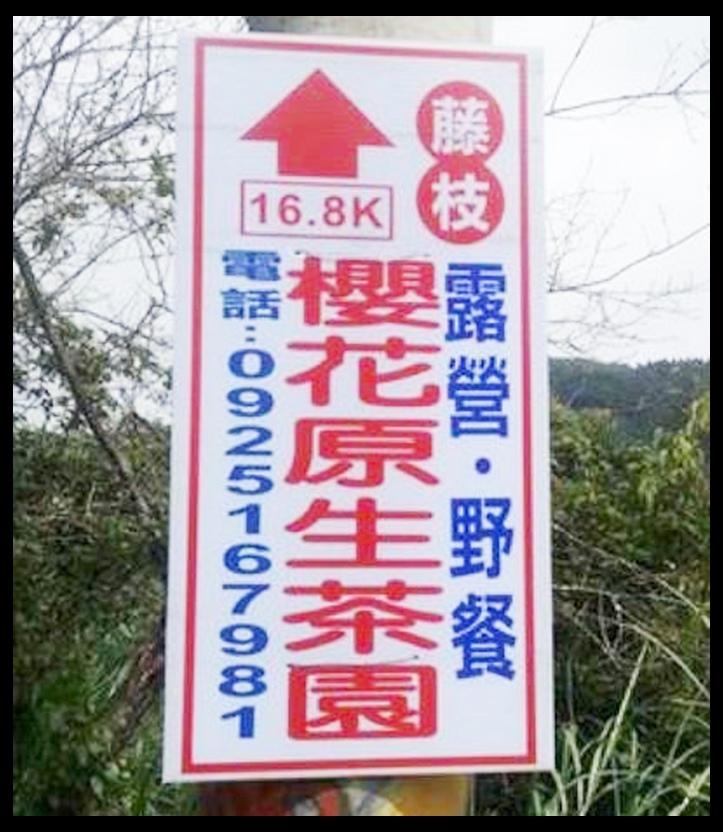 寶山櫻花公園櫻花季