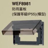 WEF8981.jpg