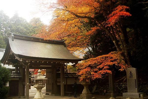 2015京都行