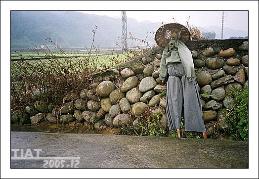 台灣稻草人-2.jpg