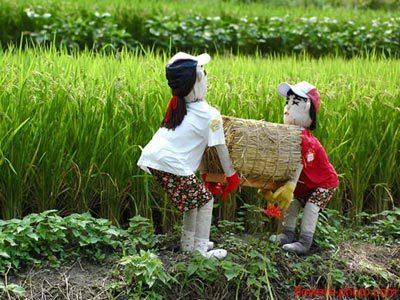 可愛的稻草人-5.jpg