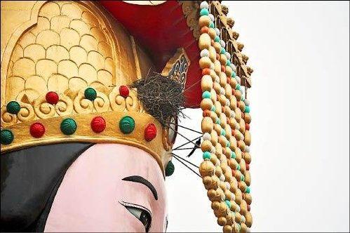 苗栗縣 竹南鎮 后厝 龍鳳宮 的媽祖 聖像 右眉上方的冠緣 有喜 鵲築巢 形成 [喜]上眉梢 的 特殊景像.jpg