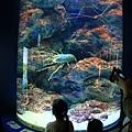 Okinawa_Day2_IMG_0713.jpg