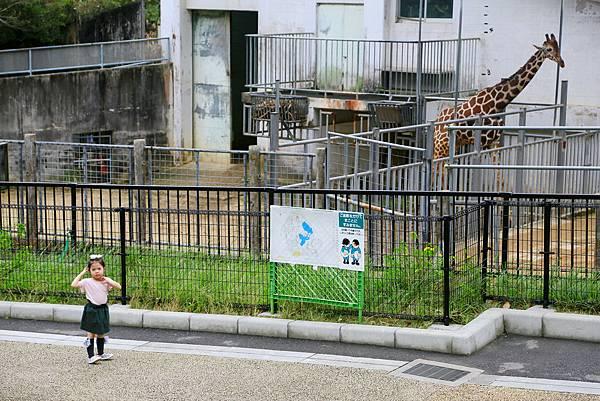 Okinawa_Day4_IMG_1084.jpg