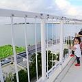 Okinawa_Day5_IMG_1210.jpg