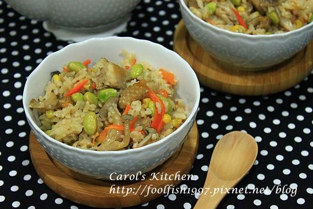 菇菇雞肉雜炊飯IMG_9961