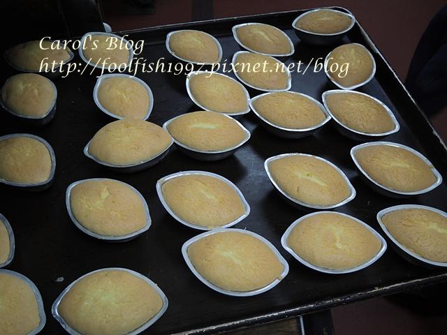 海綿蛋糕DSCN0996