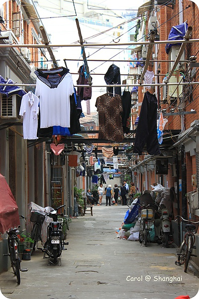 Blog 2010上海-思南路 05.JPG