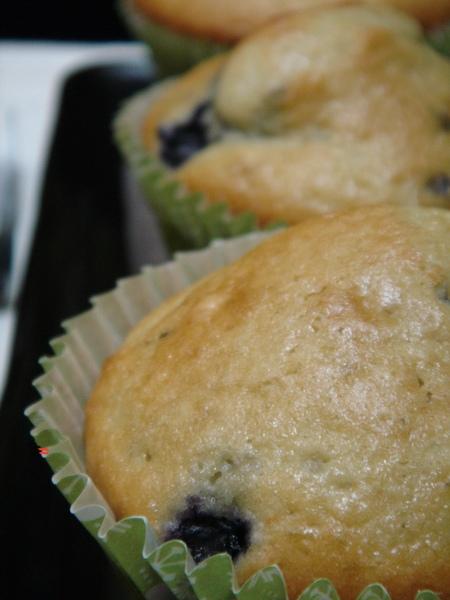 Blueberry Muffin 01.jpg
