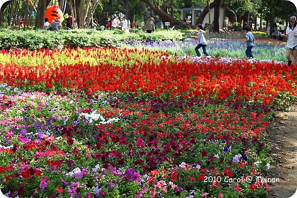 2010台南公園賞花季 01.JPG