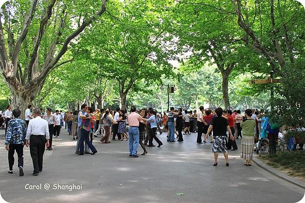Blog 2010上海-思南路 13.JPG