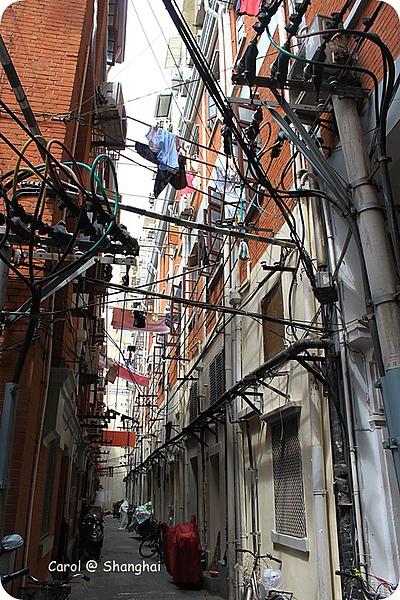 Blog 2010上海-思南路 09.JPG
