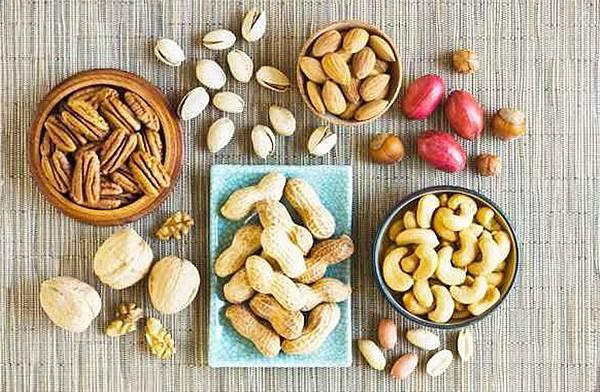 營養蛋白質.jpg