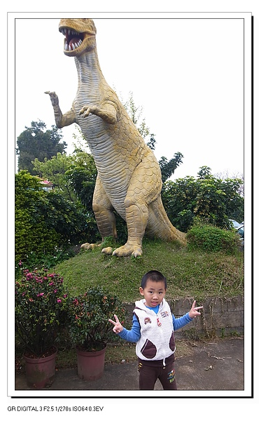2.Jerry愛和恐龍照相.JPG