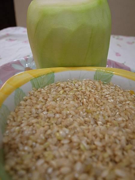 2.蒲仔及糙米.JPG