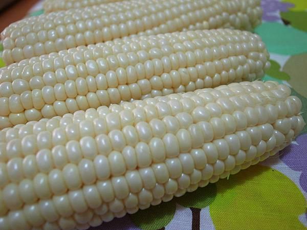 2.閃著珍珠光采般的玉米.JPG