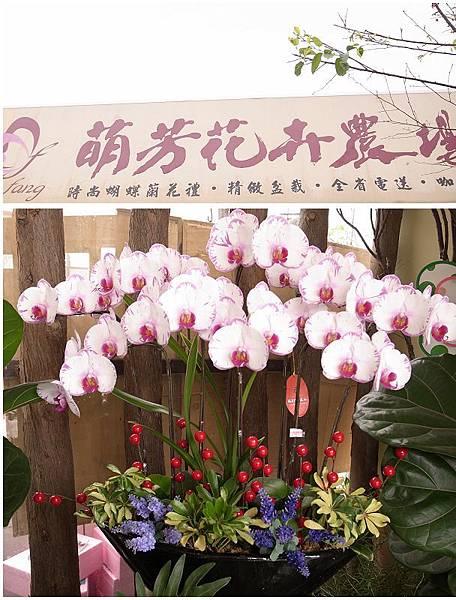 11萌芳花卉農場