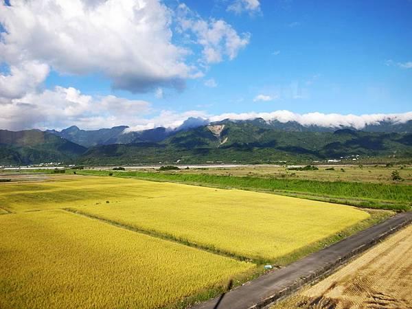 2.金黃色平原的花東縱谷