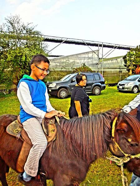 14.初次騎馬的欣喜