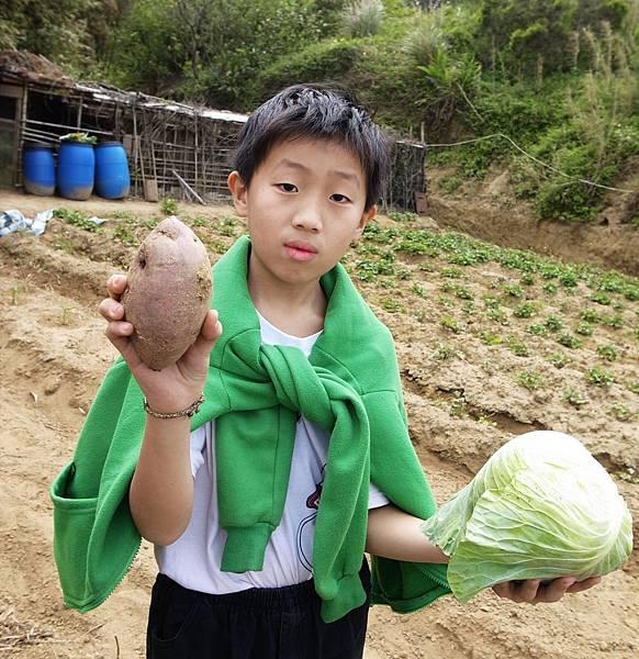 19.肥沃的農產大豐收