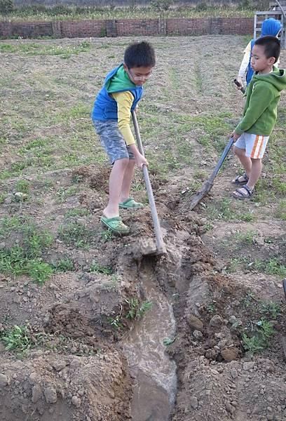 41.引水灌溉農田