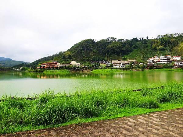 32.水洗過的綠景