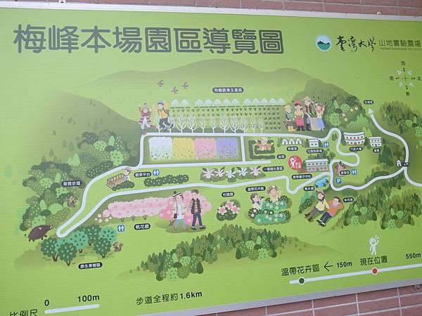 4-1梅峰map