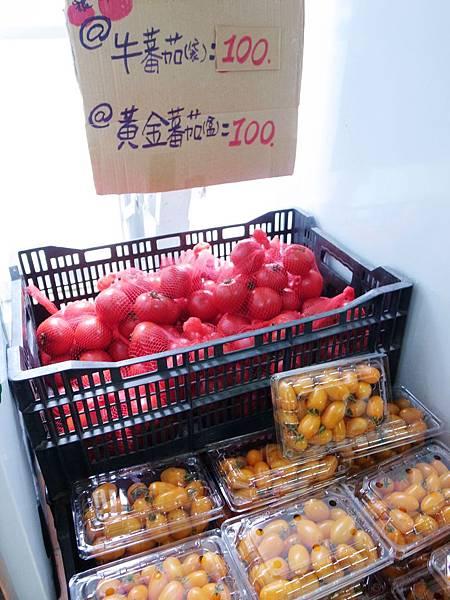 4-4蕃茄們