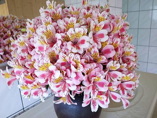 4-17大器的花束