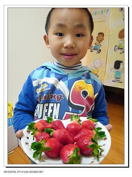 9.上菜了~新鮮草莓.JPG