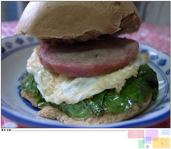 9.台式漢堡.jpg