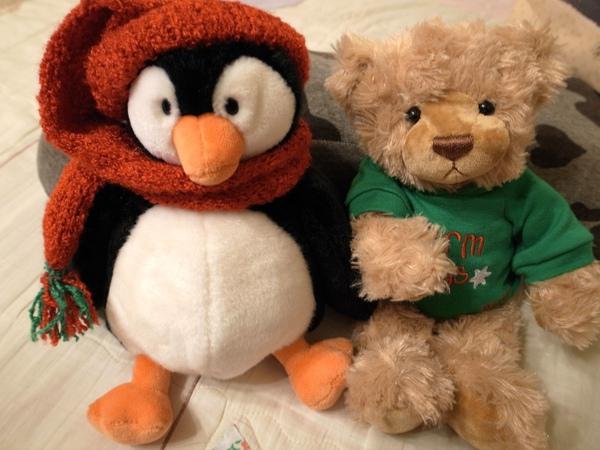 企鵝與泰迪熊.jpg