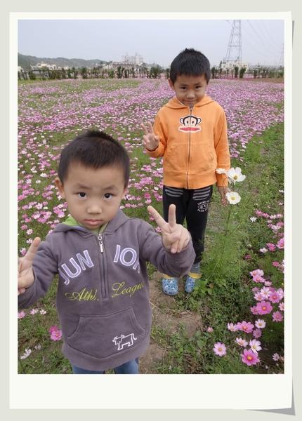 兩兄弟於花海.jpg