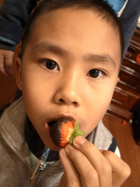 Gino吃黑草莓.jpg