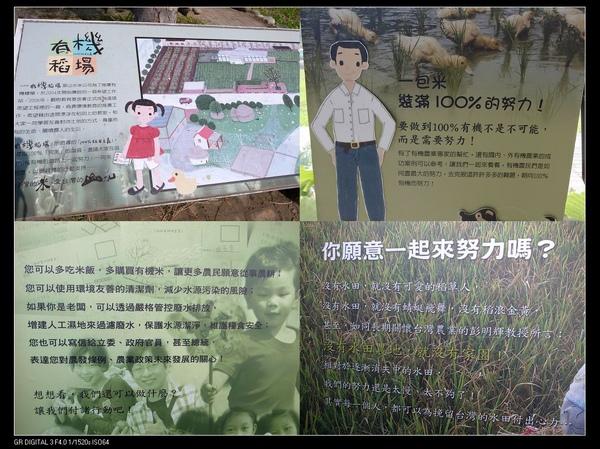 12邁向有機稻米.jpg