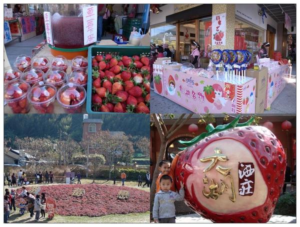 12大湖草莓街景.jpg