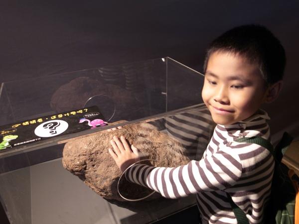 12.摸化石.jpg