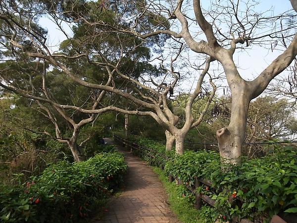 16.優美的自然步道.jpg