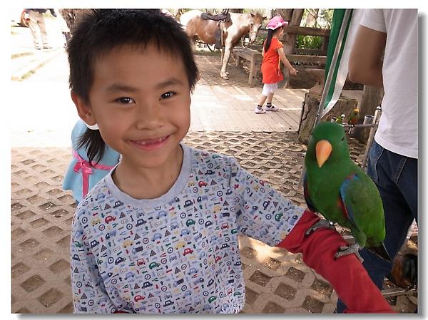 1.Gino與鸚鵡.jpg