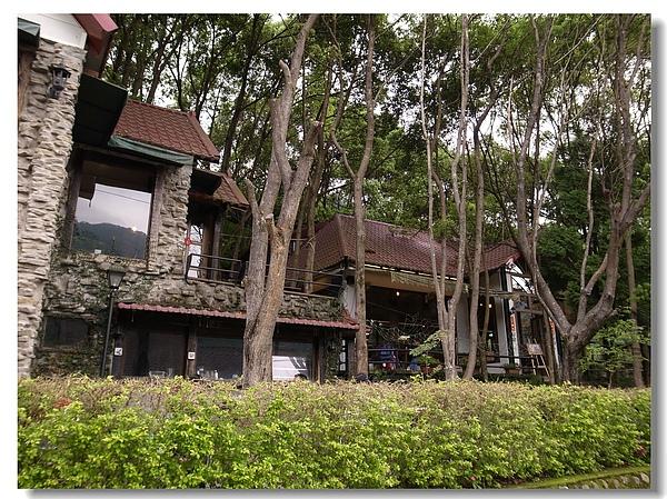 2-2.被樹林包圍的櫻木花道.jpg