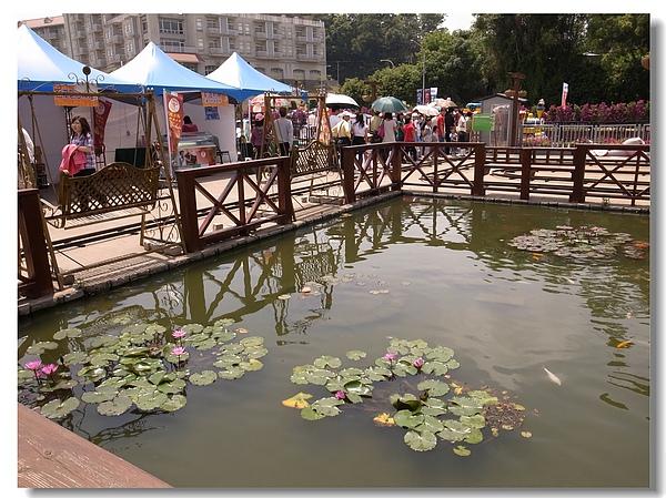 7.遊樂區小水池.jpg